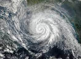 Were you or your business affected by Cyclone Seroja?